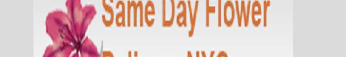 Same Day Flower Delivery Brooklyn NY - Send Flowers