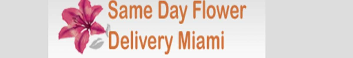 Same Day Flower Delivery Miami FL - Send Flowers