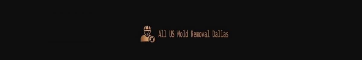 Get In Mold Removal Dallas - Mold Remediation Service
