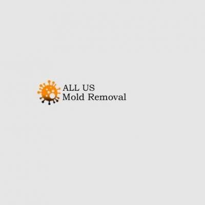 ALL US Mold Removal & Remediation - Frisco TX